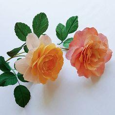 Crepe paper magnolia flowers by Lynn Dolan