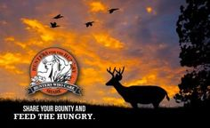 Louisiana whitetails big deer books guide herd hunt for Fishing license in louisiana