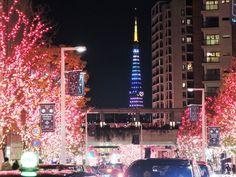 Tokyo Tower 2014-12-23