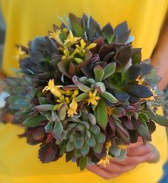 The Hottest Wedding Trend: 60 Succulent Wedding Bouquets