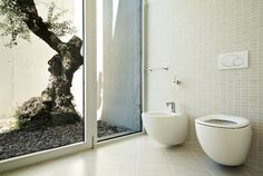Wall Mounted Toilet And Bidet Near Outdoor Access