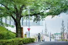Tokyo Institute of Technology Library (東京工業大学附属図書館). /  Architect : Yasuda Atelier (設計:安田幸一研究室+佐藤総合計画).