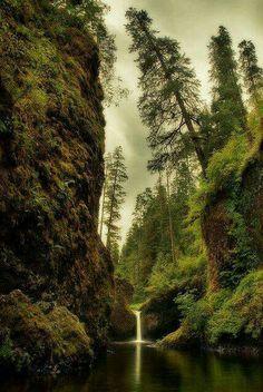 Punchbowl Falls, OR