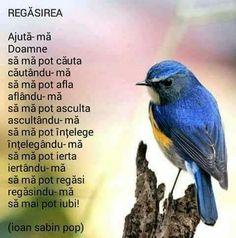 Vorbe My Prayer, Prayers, Spirituality, Faith, Album, Thoughts, Quotes, Decor, Tattoo