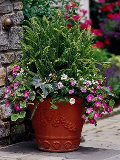 Colorful Container Gardens from http://www.bhg.com/home-improvement/porch/outdoor-rooms/pretty-outdoor-living-spaces/#