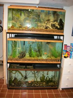 Fish tanks on pinterest fish tank stand aquarium stand for 55 gallon fish tank stand for sale