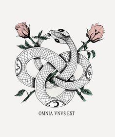 Omnia vnvs est