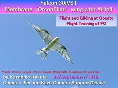 Falcon : Flight and Gliding at Oosato Flight training of FO Robot Bird, Pinion Gear, Science And Technology, Train, Youtube, Strollers, Youtubers, Youtube Movies