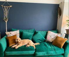 Living room colour blocking