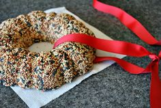 Birdseed wreath - what fun to make with the kids!