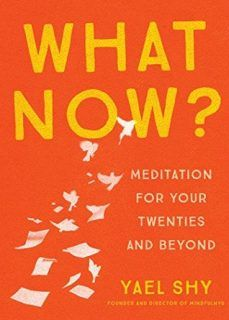 What Now?: Meditation for Your Twenties by Yael Shy   eBookBB