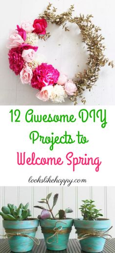 12 Awesome DIY Proje