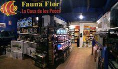 #TiendaDeLaSemana! Os presentamos a los amigos de Fauna Flor, en Elche (Alicante), y su pasión por la acuariofilia. http://blog.hagen.es/?p=1626 #Productos #Mascotas