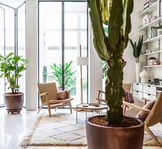 YLAB arquitectos creates sunny interior in barcelona apartment renovation Living Room Modern, Living Spaces, Living Rooms, Jardin Luxuriant, Decoracion Vintage Chic, Barcelona Apartment, Cabinet D Architecture, Landscape And Urbanism, Hidden Kitchen