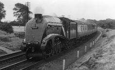60007 Sir Nigel Gresley on the Yorkshire Pullman Diesel Locomotive, Steam Locomotive, British Pullman, Train Museum, Steam Railway, Steam Engine, Cathedral, Around The Worlds, Europe