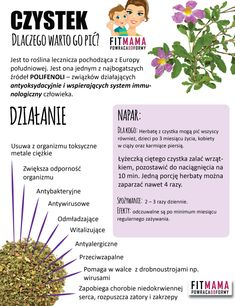 Co warto pić Healthy Habits, Healthy Tips, Healthy Eating, Avocado Health Benefits, Health Advice, Natural Medicine, Raw Food Recipes, Superfood, Herbalism