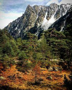 #cauterets #pontdespagne #pyrénées #montagne #hautespyrenees #gave #nature #naturesauvage by lours_des_montagnes