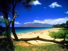 The Beautiful Scenery Hawaiian IslandsPosted on 5:38 AM by Ariskevin siringoringoThe Beautiful Scenery Hawaiian Islands