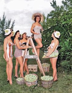 Lime festival beauties, Florida Keys, 1958. Colorized by Steve Smith Colorized History, Shucking Oysters, West Monroe, White Image, Second Child, Key West, Historical Photos, Female Models, Florida