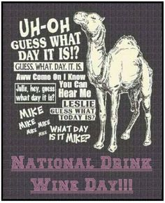 Happy National Drink Wine Day. Great Day To Pair Wine With MORE SNOW!! #wine #nationaldrinkwineday #humpdaycamel