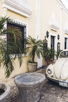 Valladolid Mexico Coqui Coqui Hotel Travel Guide & Insider Tips Where to Stay & Eat in the Colonial Yucatan Town - Boutique Hotels, Restaurants, Cenotes near Tulum