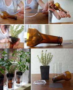 Make your own plantpot using glass bottles. #recycling #outdoor