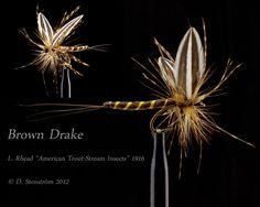 Amazing artistic Brown Drake pattern!