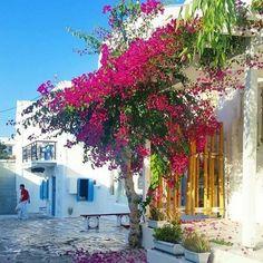 Antiparos, Greece ... @marciantiparos