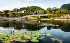 American landscape architecture specialists the SWA Group have unveiled their latest offering in Asia; the Yongtai project is a residential scheme idyllically situated within Fuzhou's Red Cliff Scenic Area, bordering the Dazhang River in southeast Chin...