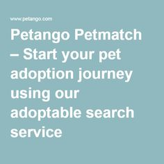 Petango Petmatch – Start your pet adoption journey using our adoptable search service