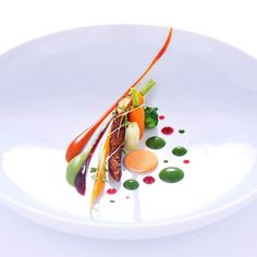Vegetables X Desserts by @christian_huembs via #chefstalk #plating #presentation