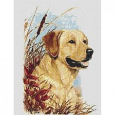 Pattern will be sent by email in pdf format.   This cross stitch pattern features a yellow or golden lab dog.   This is a counted cross stitch pattern, professionally created by Jiffy Pattern Shop. It