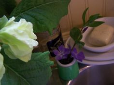springtime flora in kitchen by coastal nest, via Flickr