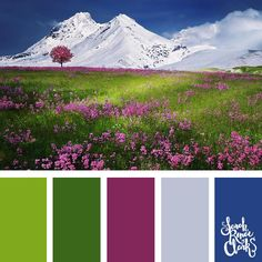 The pink in this scene provides a beautiful contrast to the green grass and blue sky - a great color combination! | Click for more color schemes inspired by beautiful landscapes and other coloring inspiration at https://sarahrenaeclark.com | #colorscheme #colorpalette #color