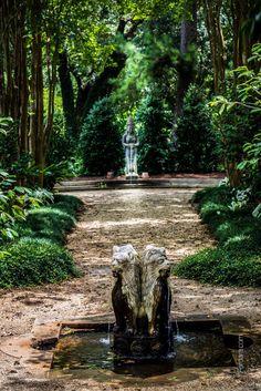 Beautiful scene from Rip Van Winkle Gardens, Jefferson Island, LA (near New Iberia).  Credit goes to photographer F Mark Hubbard
