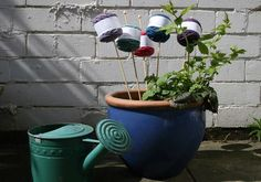 So our Lleyni Mini Wool Pots DO grow on trees!