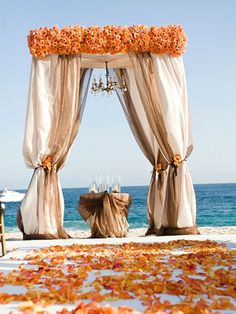 Orange and Champagne Wedding Ceremony Canopy/Chuppah.this is my dream wedding? Wedding Bells, Wedding Ceremony, Our Wedding, Dream Wedding, Wedding Ideas, Beach Ceremony, Wedding Photos, Drapery Wedding, Wedding Chuppah