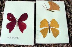 Butterflies from autumn leaves - sweet greeting cards