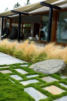 Growing grasses in a bed and pavers with plants