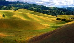 """Salinas Valley, CA..  We live in Salinas, California.. We live in the city, but outside the city this is what we see.. Salinas is known as the  """"Salad Bowl"""" of the world.."""