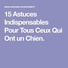 15 Astuces Indispensables Pour Tous Ceux Qui Ont un Chien.