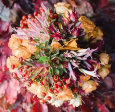 Natural Bouquet, Fall Bouquets, Autumn, Nature, Plants, Fall, Flora, Nature Illustration, Off Grid