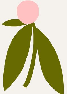 PEACH FLOWER giglée print from the series: Portraits of Plants