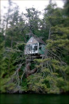 Amazing Snaps: Awesome treehouse Please visit our website…