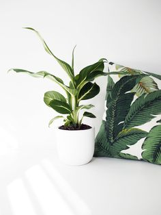 Natural patterns can be reflected in the textiles and fabrics we use, linking the house and sofa areas to the nature outside.
