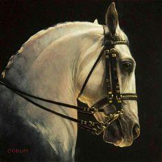 Amazing Lippizzaner painting by Jaime Corum!