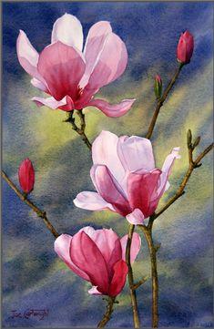 """Magnolias, dark background"", Joe Cartwright"