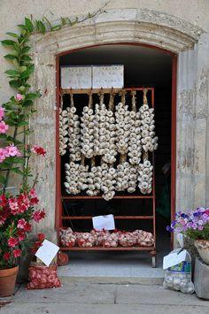 Garlic, Fourcès, Midi-Pyrenees, France