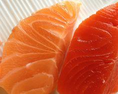 10 motivi per non mangiamo il salmone allevato