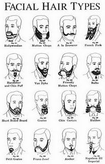 A Guide to Beard Watching For Caleb